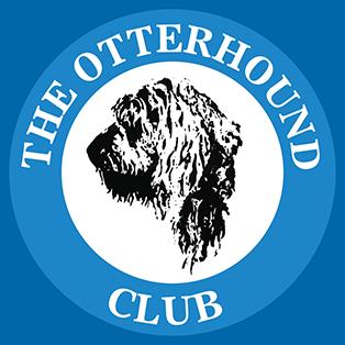 Otterhound Club